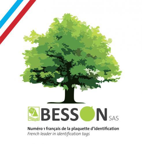 Logo le-besson